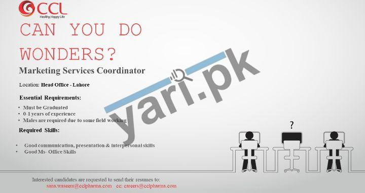 Marketing Services Coordinator Jobs in Lahore